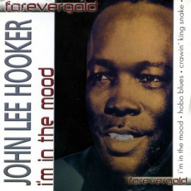 Forevergold - John Lee Hooker Im In The Mood