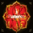Flamenco - New Grooves