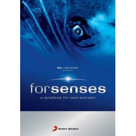 Blu Elements Project - Forsenses